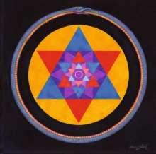 Wolvennest: Void (180g) (Clear Vinyl), 2 LPs