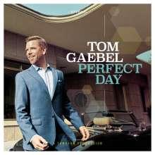 Tom Gaebel: Perfect Day, LP
