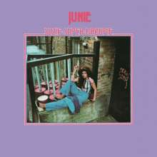 Junie: Suzie Super Groupie (2020 Reissue), LP