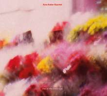 Arne Huber (geb. 1977): Live At The Bird's Eye, CD