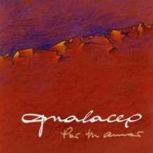 Gualaceo: Por Tu Amor, CD