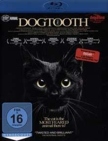 Dogtooth (Blu-ray), Blu-ray Disc