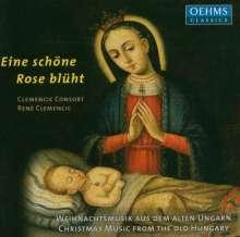 Clemencic Consort - Eine schöne Rose blüht, CD