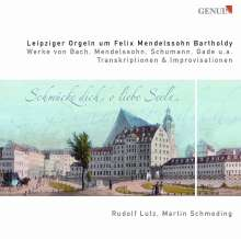 Leipziger Orgeln um Felix Mendelssohn Bartholdy, 2 CDs