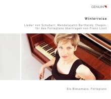 Els Biesemans - Winterreise, CD