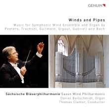 Sächsische Bläserphilharmonie - Winds and Pipes, CD