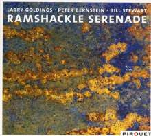 Larry Goldings, Peter Bernstein & Bill Stewart: Ramshackle Serenade, CD
