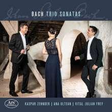 Johann Sebastian Bach (1685-1750): Triosonaten für 2 Flöten & Cembalo BWV 1028,1029,1036,1037,1039, CD