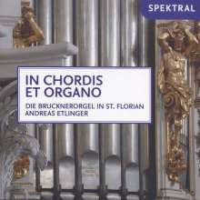 Andreas Etlinger - In Chordis Et Organo, CD