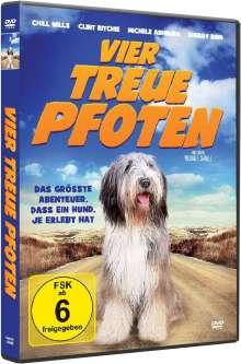 Vier treue Pfoten, DVD
