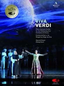 Giuseppe Verdi (1813-1901): Viva Verdi, 2 DVDs