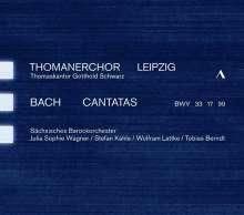 Johann Sebastian Bach (1685-1750): Kantaten BWV 17,33,99, CD