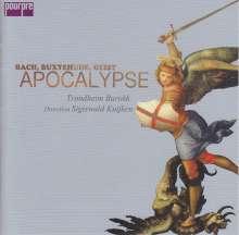Apocalypse - Kantaten der Barockzeit (Exklusiv für jpc), CD