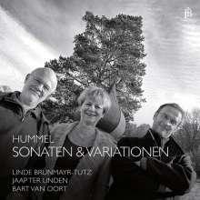 Johann Nepomuk Hummel (1778-1837): Kammermusik mit Flöte, CD