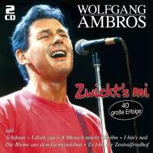 Wolfgang Ambros: Zwickt's mi: 40 große Erfolge, 2 CDs