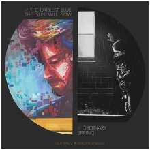Felix Waltz & Hendrik Lensing: The Darkest Blue The Sun Will Sow, Ordinary Spring, LP