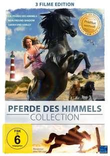 Pferde des Himmels Collection, DVD