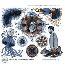 Friedrich Liechtenstein: Friedrich Liechtenstein Trio: Schönes Boot aus Klang (180g) (Limited-Numbered-Edition), LP