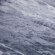 """Friends Of Gas: Carrara (Limited Edition) (Colored Vinyl), Single 12"""""""
