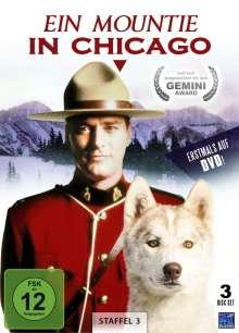 Ein Mountie in Chicago Staffel 3, 3 DVDs