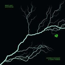 Franz Schubert (1797-1828): Mercy Seat - Winterreise (Eine Seance zwischen Franz Schubert & Nick Cave), CD