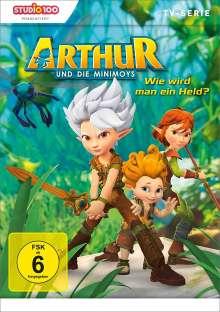 Arthur und die Minimoys DVD 1, DVD