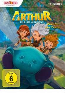 Arthur und die Minimoys DVD 2, DVD