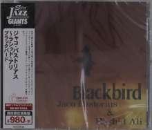 Jaco Pastorius & Rashid Ali: Blackbird, CD