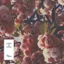 El Buho: Camino De Flores, CD
