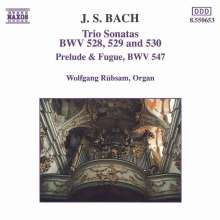 Johann Sebastian Bach (1685-1750): Triosonaten BWV 528-530, CD
