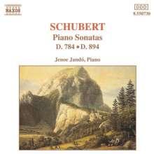 Franz Schubert (1797-1828): Klaviersonaten D.784 & D.894, CD