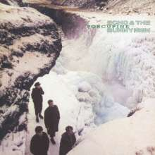 Echo & The Bunnymen: Porcupine (SHM-CD) (Papersleeve), CD