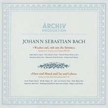 Johann Sebastian Bach (1685-1750): Kantaten BWV 140 & 147 (SHM-SACD), Super Audio CD Non-Hybrid