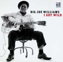 Big Joe Williams (Guitar): I Got Wild, CD