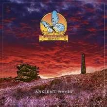 John Lees' Barclay James Harvest: Ancient Waves EP, LP