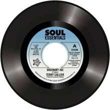 "Terry Callier & Jerry Butler: Ordinary Joe, Single 7"""