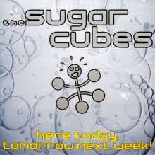 The Sugarcubes: Here Today, Tomorrow Next Week (180g) (Limited Numbered Edition), 2 LPs