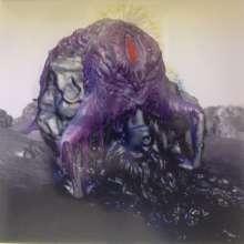 Björk: Vulnicura (180g) (Deluxe Edition), 2 LPs