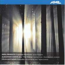 Anna Meredith (geb. 1978): Tripotage Miniatures, CD