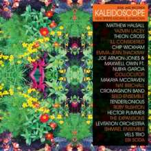 Kaleidoscope - Soul Jazz Records Presents Kaleidoscope (Limited Super Deluxe Edition), 3 LPs und 1 Single 7""