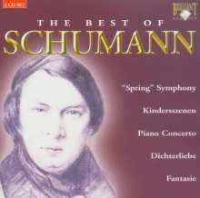 Schumann - Best of (Brilliant), 2 CDs