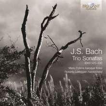 Johann Sebastian Bach (1685-1750): Flötensonaten BWV 525-530, CD