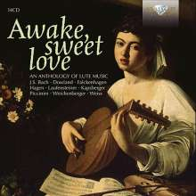 Awake sweet love - An Anthology of Lute Music, 14 CDs
