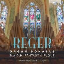 Max Reger (1873-1916): Orgelsonaten Nr. 1 & 2, CD