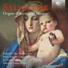 Giovanni Salvatore (1610-1688): Organ-Alternatim Masses, CD