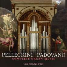 Annibale Padovano (1527-1575): Orgelwerke, CD