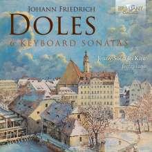 Johann Friedrich Doles (1715-1797): Klaviersonaten Nr.1-6, CD