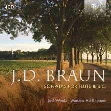 Jean Daniel Braun (1728-1740): Kammermusik für Flöte, 4 CDs