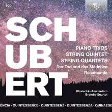 Franz Schubert (1797-1828): Klaviertrios Nr.1 & 2, 5 CDs