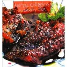 Animal Collective: Strawberry Jam, 2 LPs